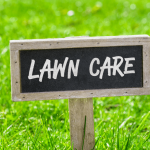 Essential Lawn Care Tips To Revive Your Winter-Worn Yard
